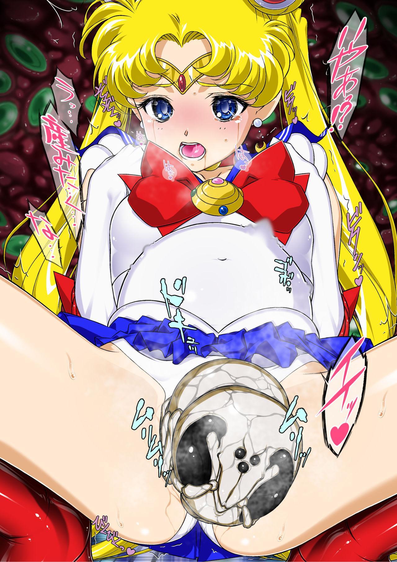 Sailor Moon Chu! 2 14