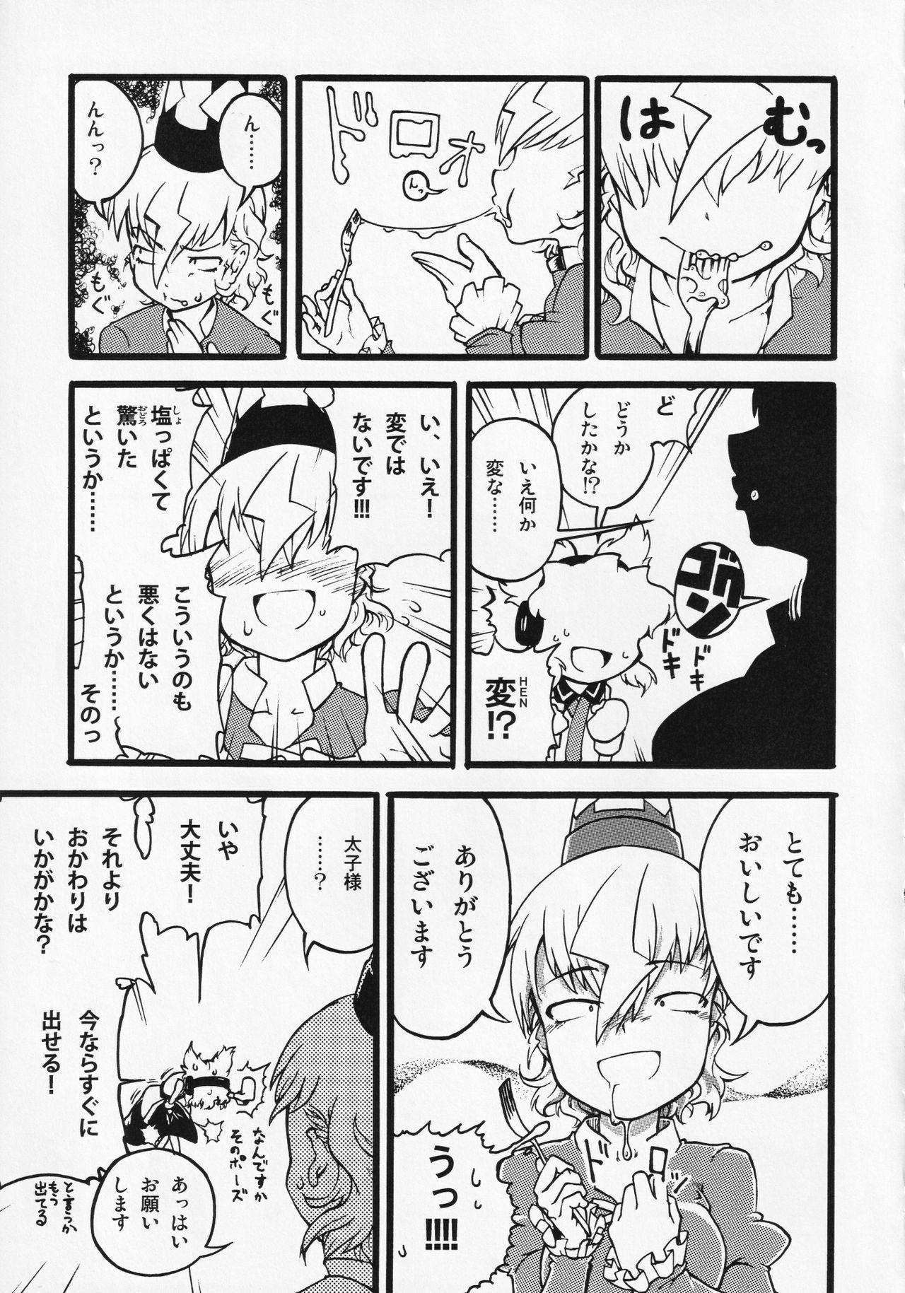 Touhou ShokuSe Goudou 25