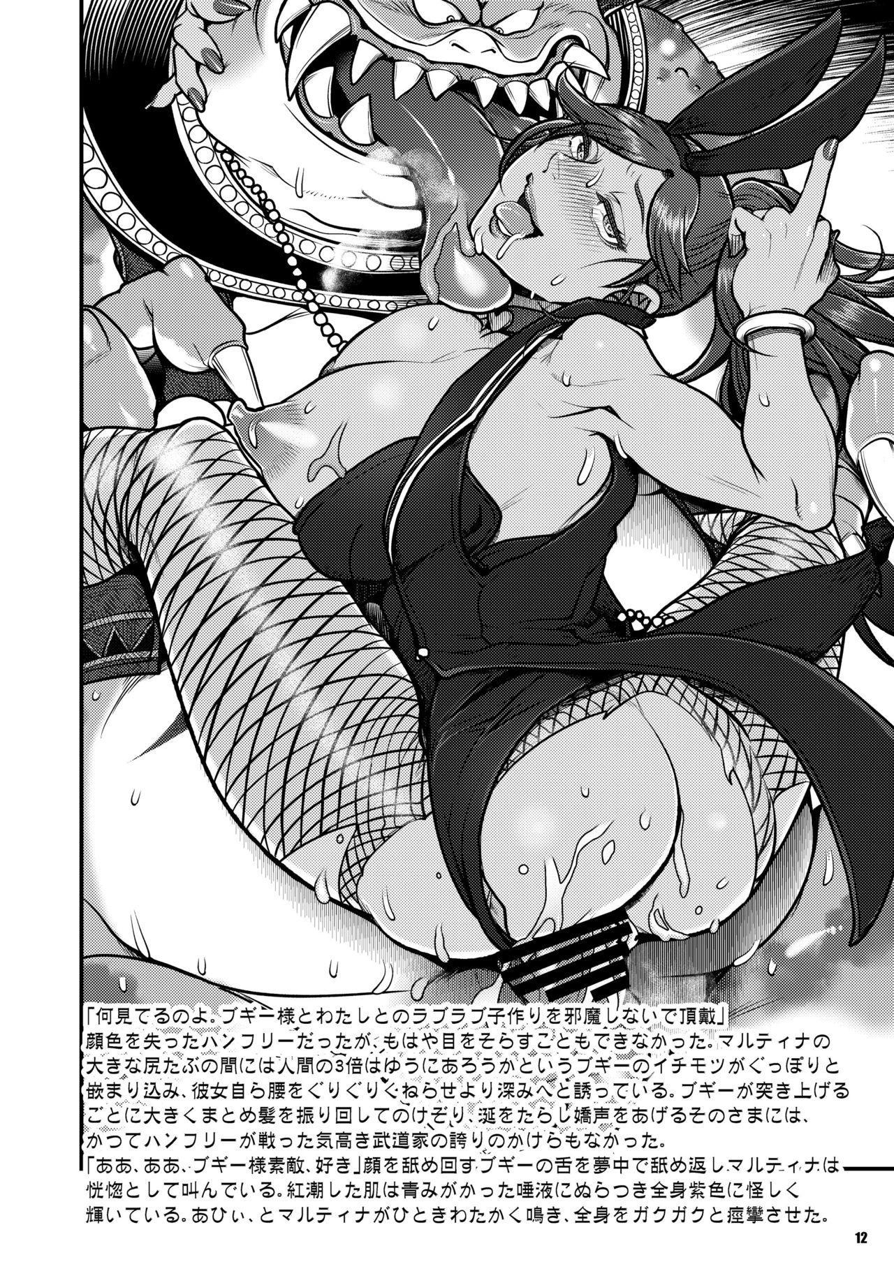 DQ Series Illust & SS Shuu 11