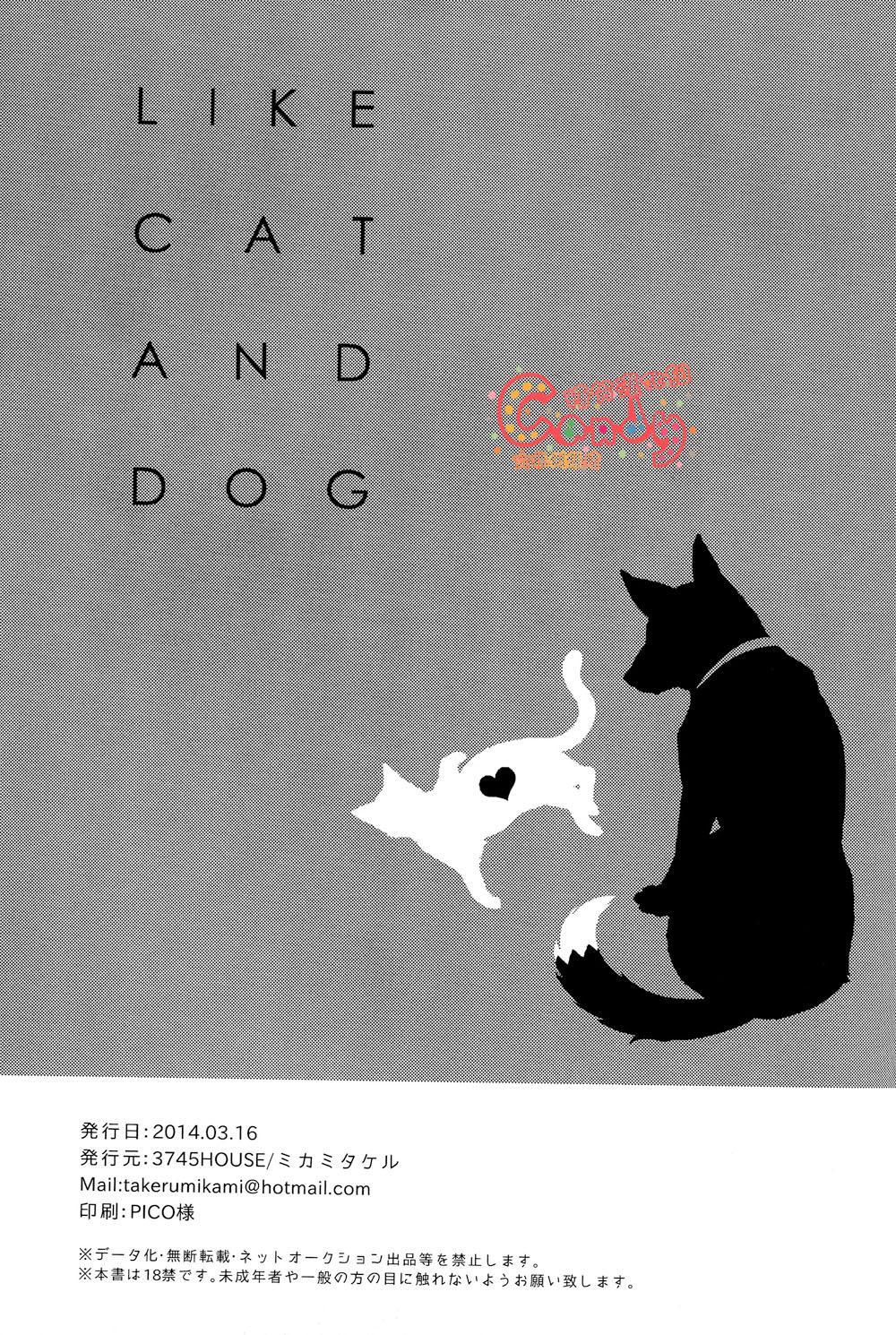 Like cat and dog 31
