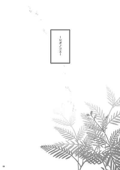 Shidanokoe※ Web Sairoku 4