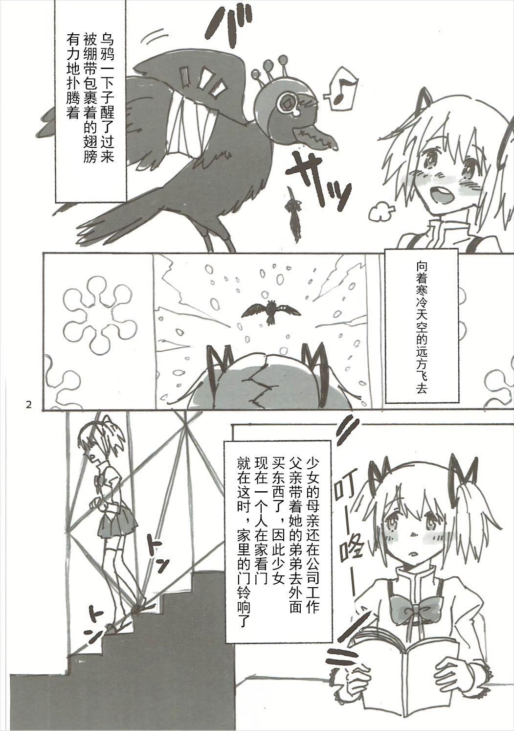 Homu no Ongaeshi 2