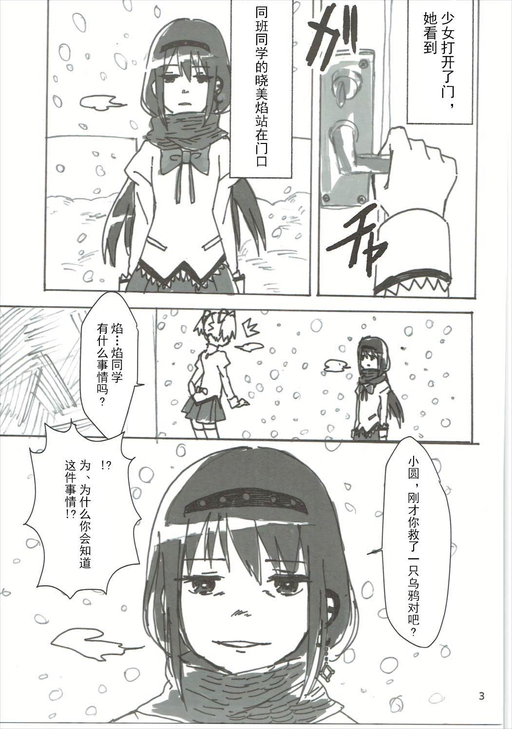 Homu no Ongaeshi 3