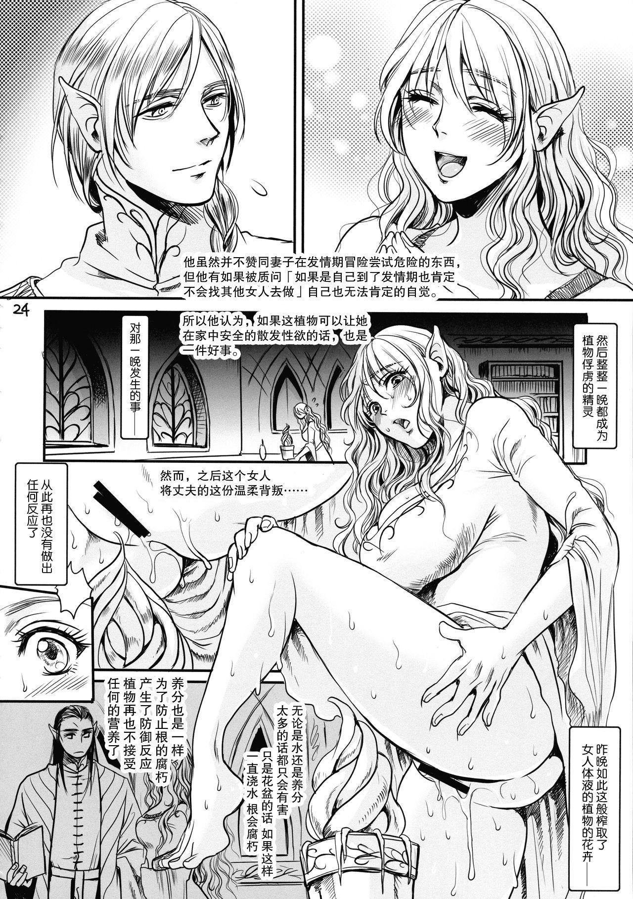 """Botsu Manga """"Kawaii Okusama"""" no Gokuyou Matome Hon + α 24"""