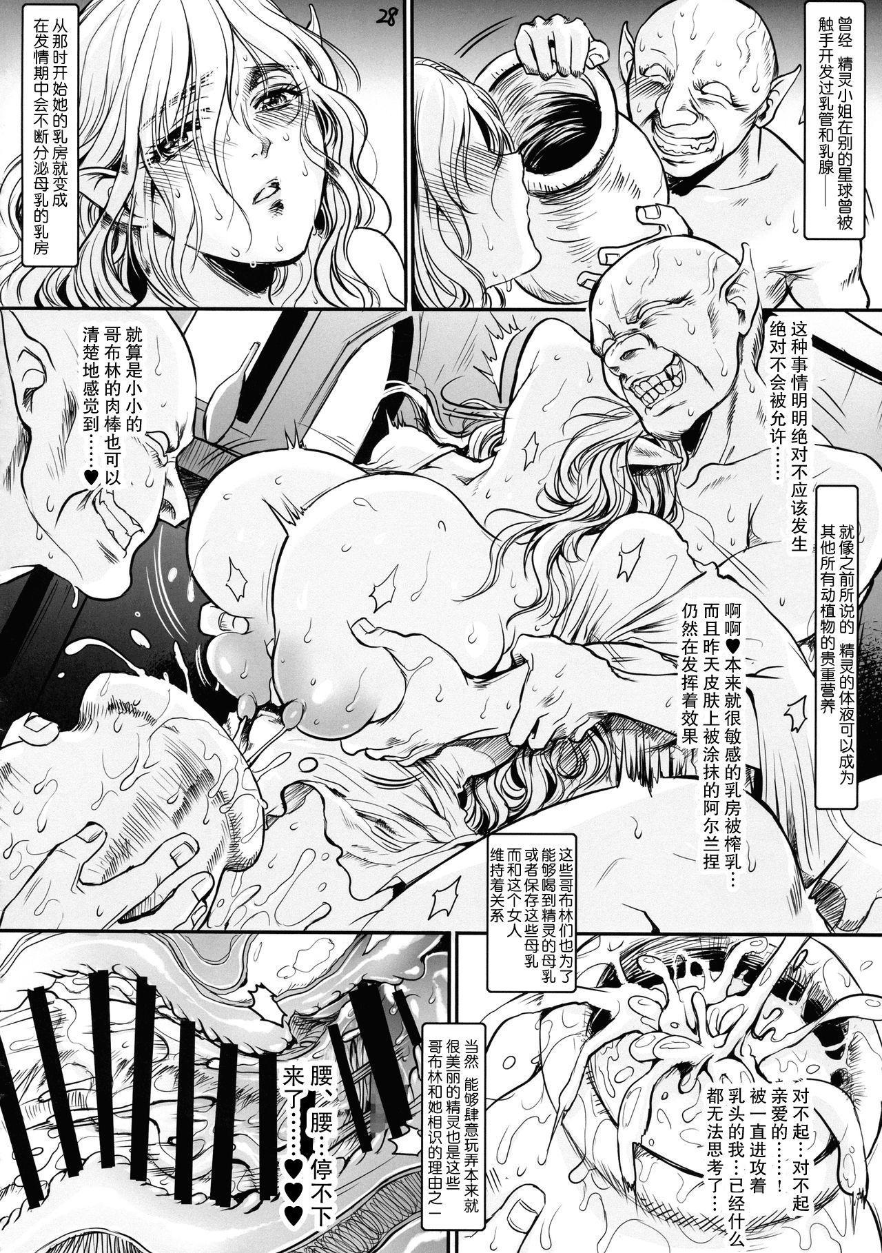 """Botsu Manga """"Kawaii Okusama"""" no Gokuyou Matome Hon + α 28"""