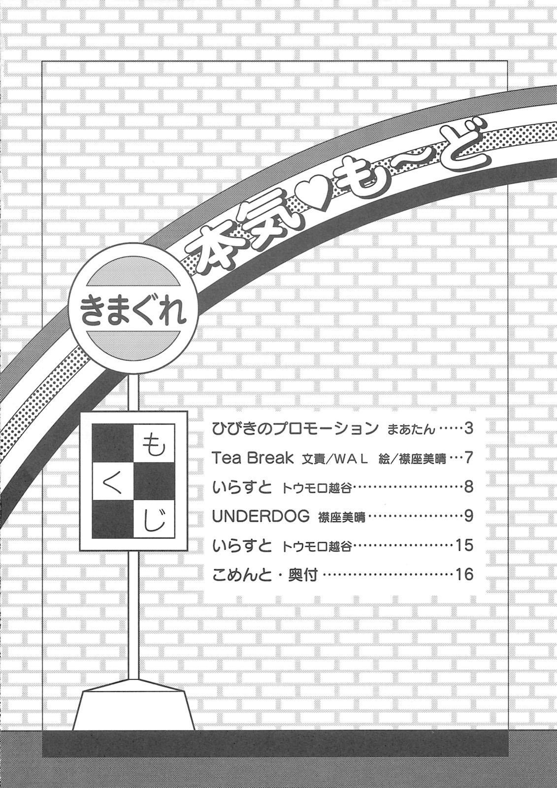 Hibiki's Promotion 2