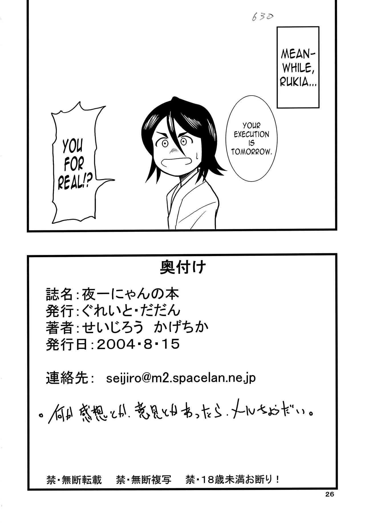 Yoruichi Nyan no Hon | Yoruichi Nyan Book 24