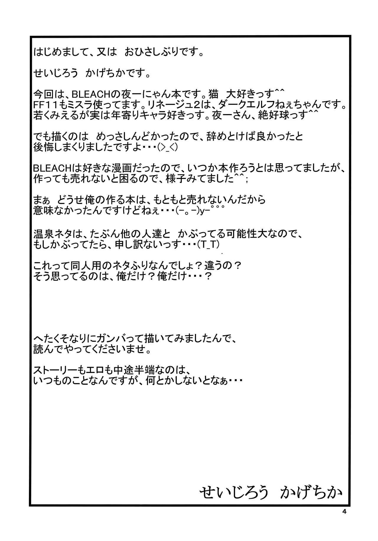 Yoruichi Nyan no Hon | Yoruichi Nyan Book 2