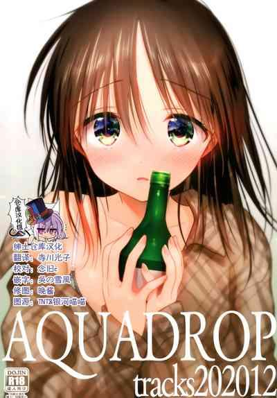 AQUQDROP tracks202012 0