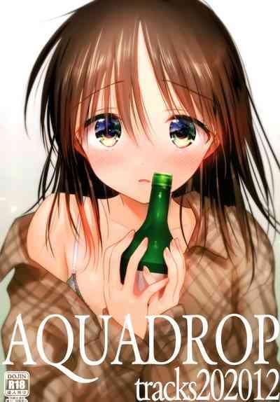 AQUQDROP tracks202012 1