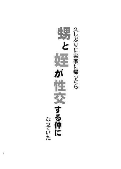 Hisashiburi ni Jikka ni Kaettara Oi to Mei ga Seikou Suru Naka ni Natte Ita 3
