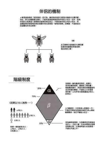 太太是α  Chinese 3