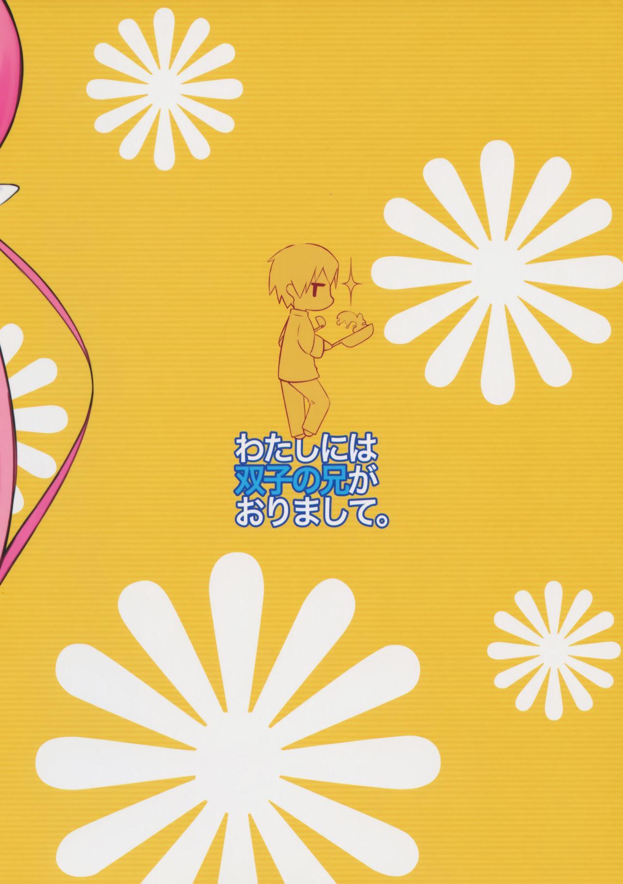 Watashi ni wa Futago no Ani ga Orimashite. 17
