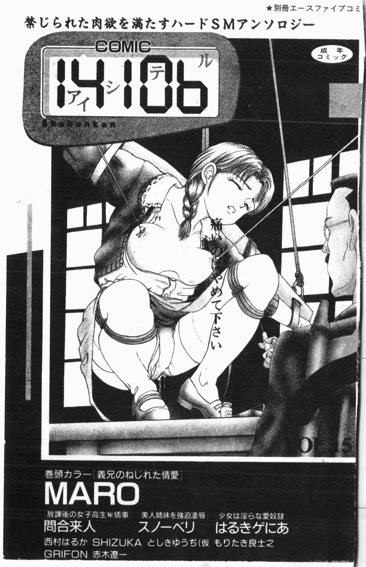 Comic Aishiteru Vol.15 1