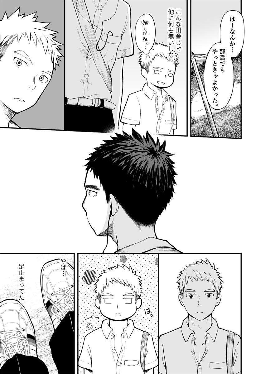 Sukoshi to Ippai no Seishun 5