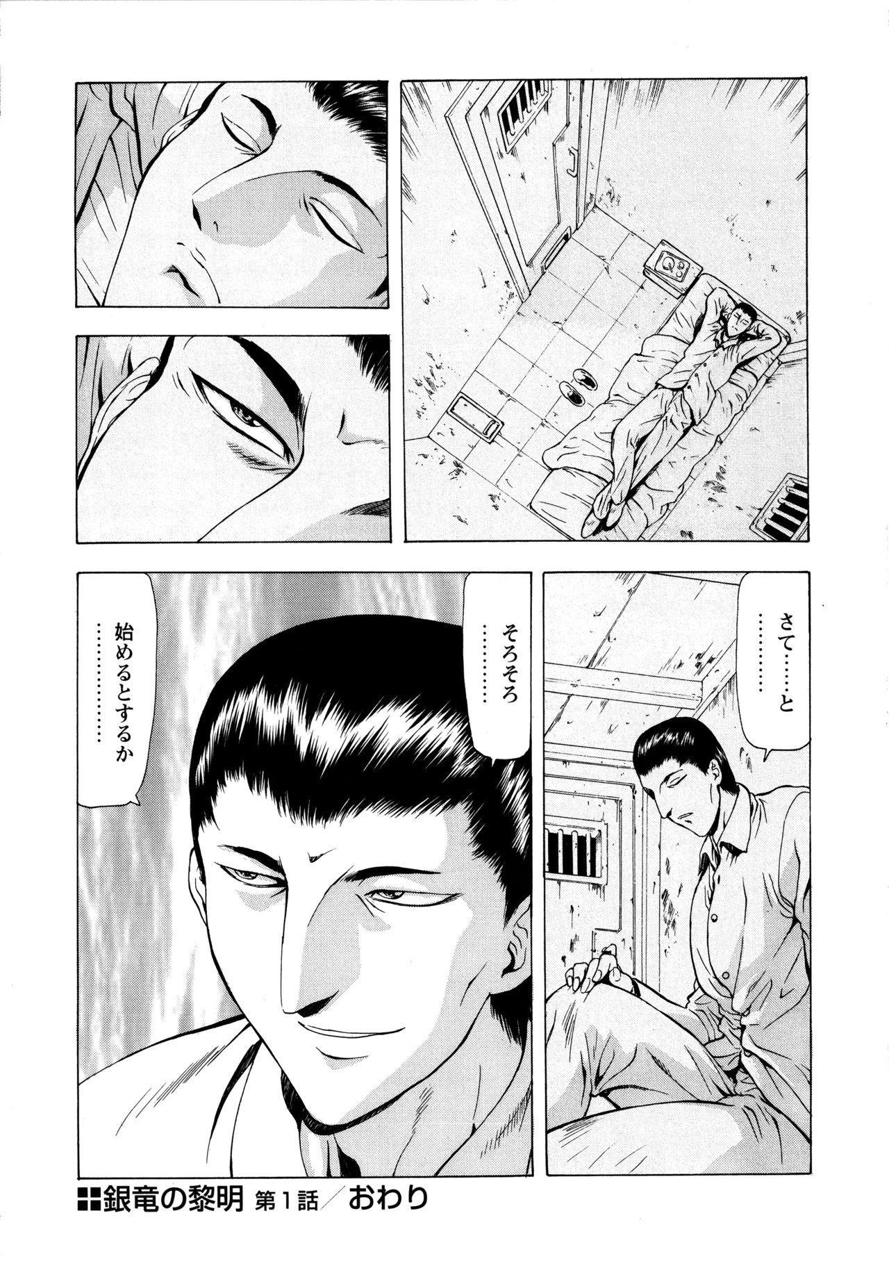 Ginryuu no Reimei Vol. 1 31