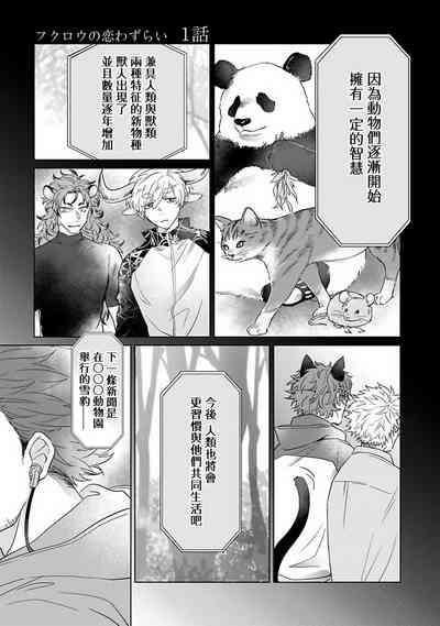 Fukurou no Koiwazurai | 猫头鹰的相思病 4