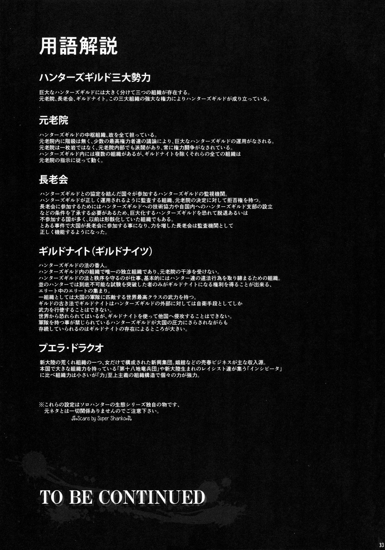 Solo Hunter no Seitai WORLD 6 29