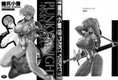 Punky Knight 4