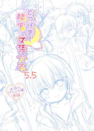 Totsugeki! Rinka no Josou Shounen 5.5 Otomari Pajama Hen 2