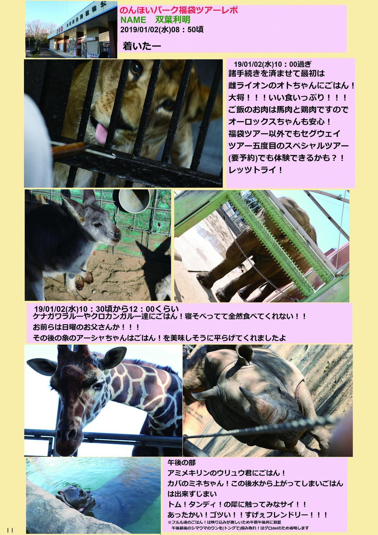 may Kemono Friends Thre Goudoushi 2 12
