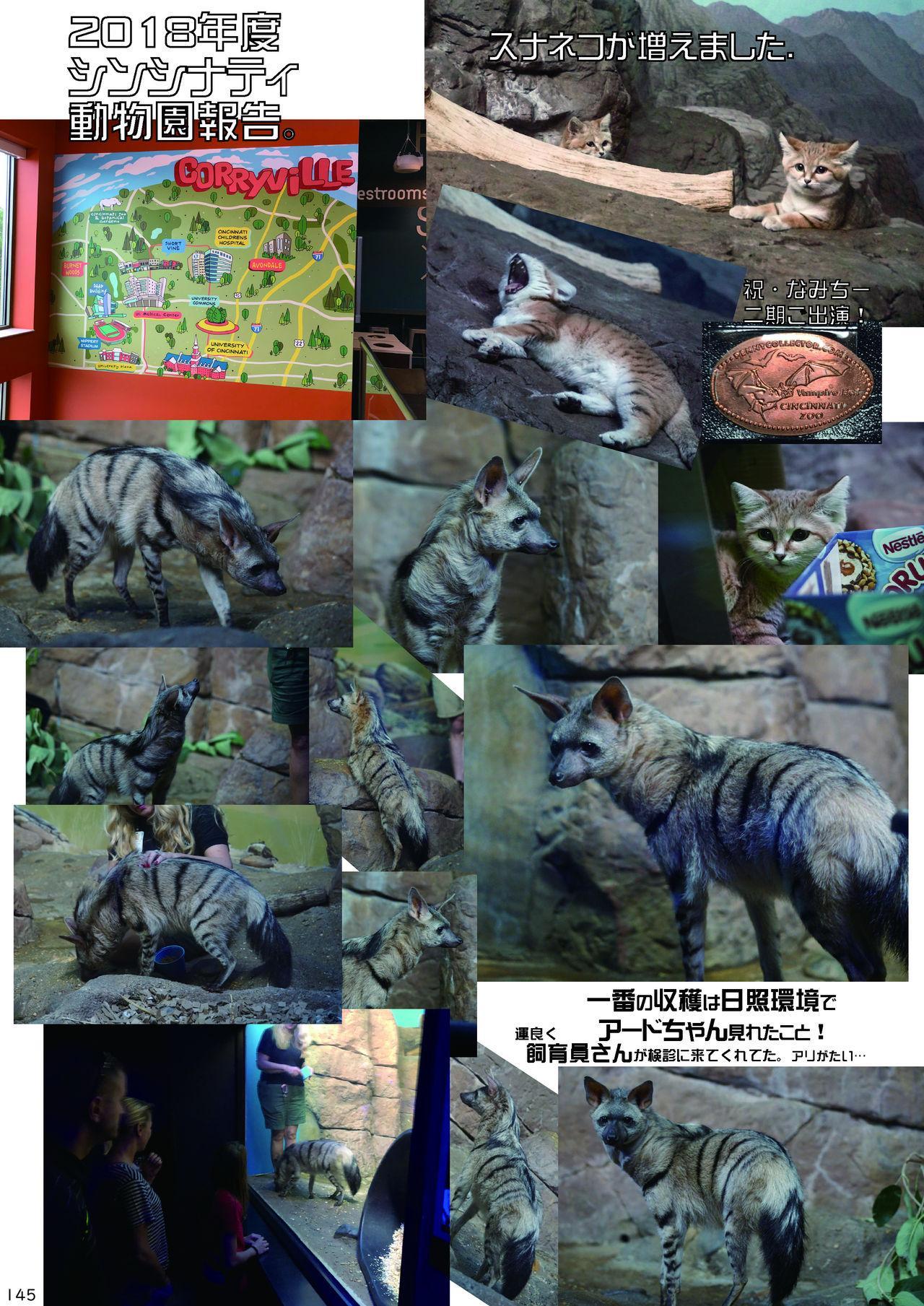 may Kemono Friends Thre Goudoushi 2 148