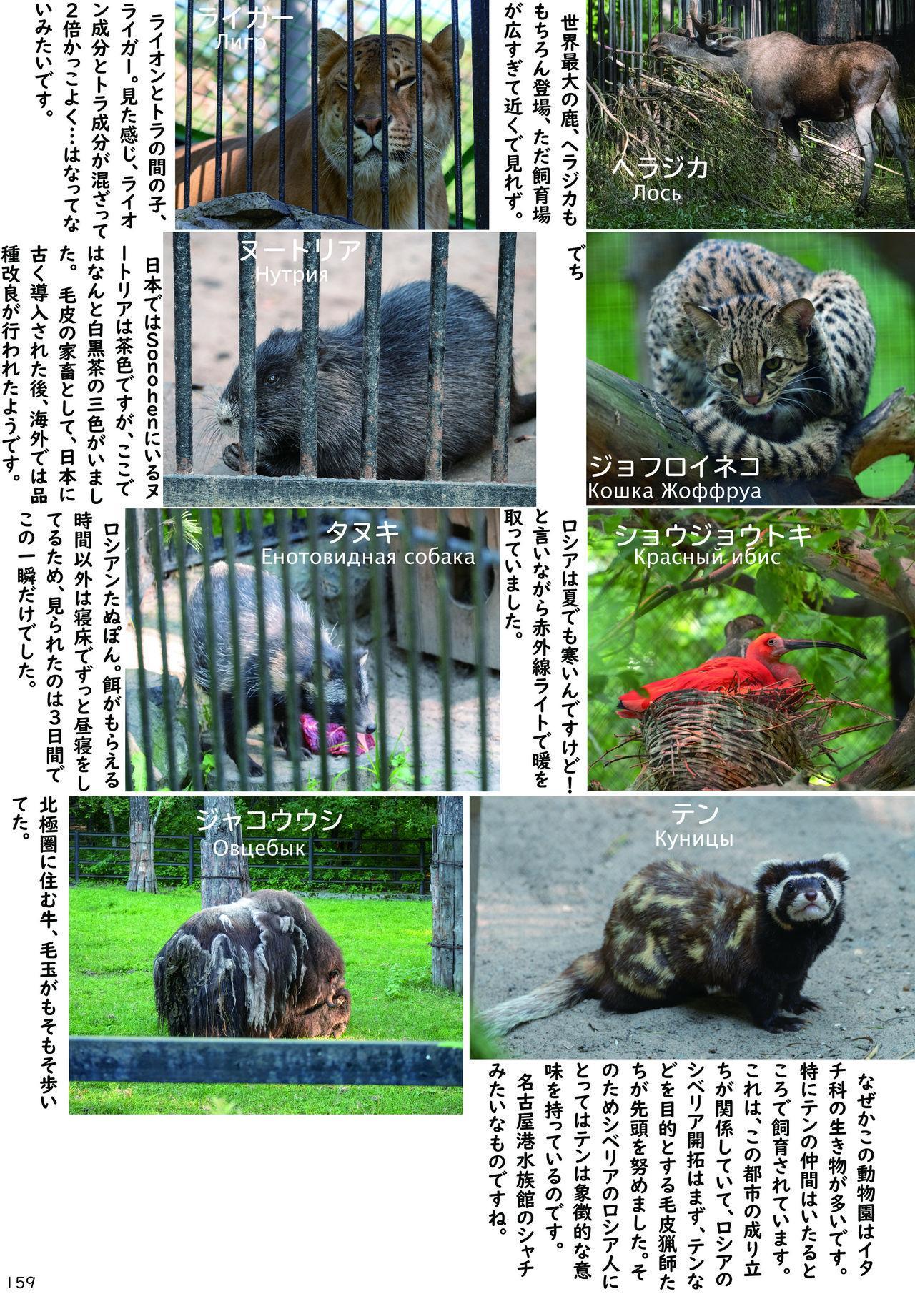 may Kemono Friends Thre Goudoushi 2 162