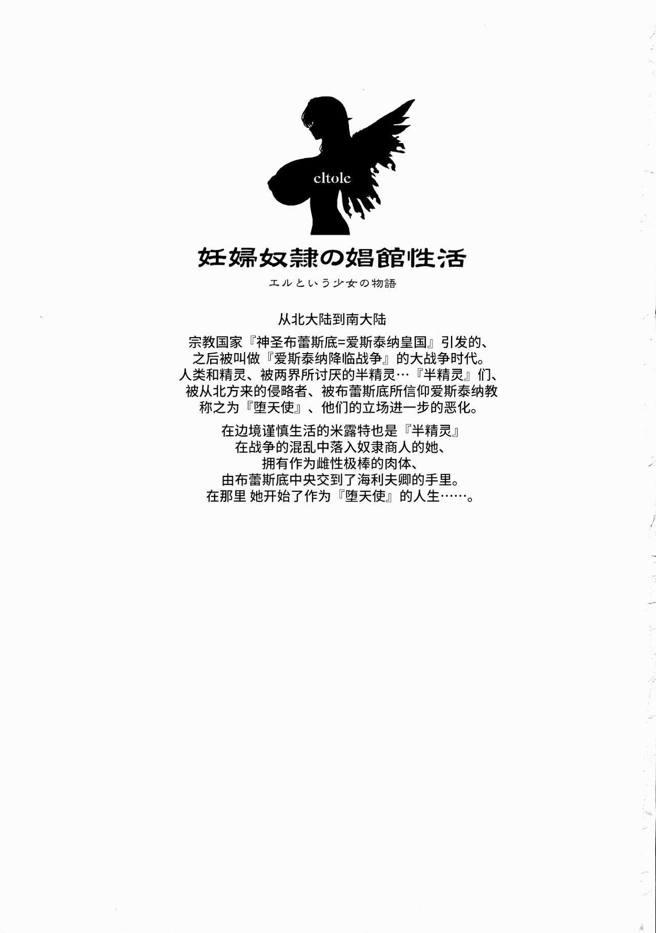 Ninpu Dorei no Shoukan Seikatsu 2