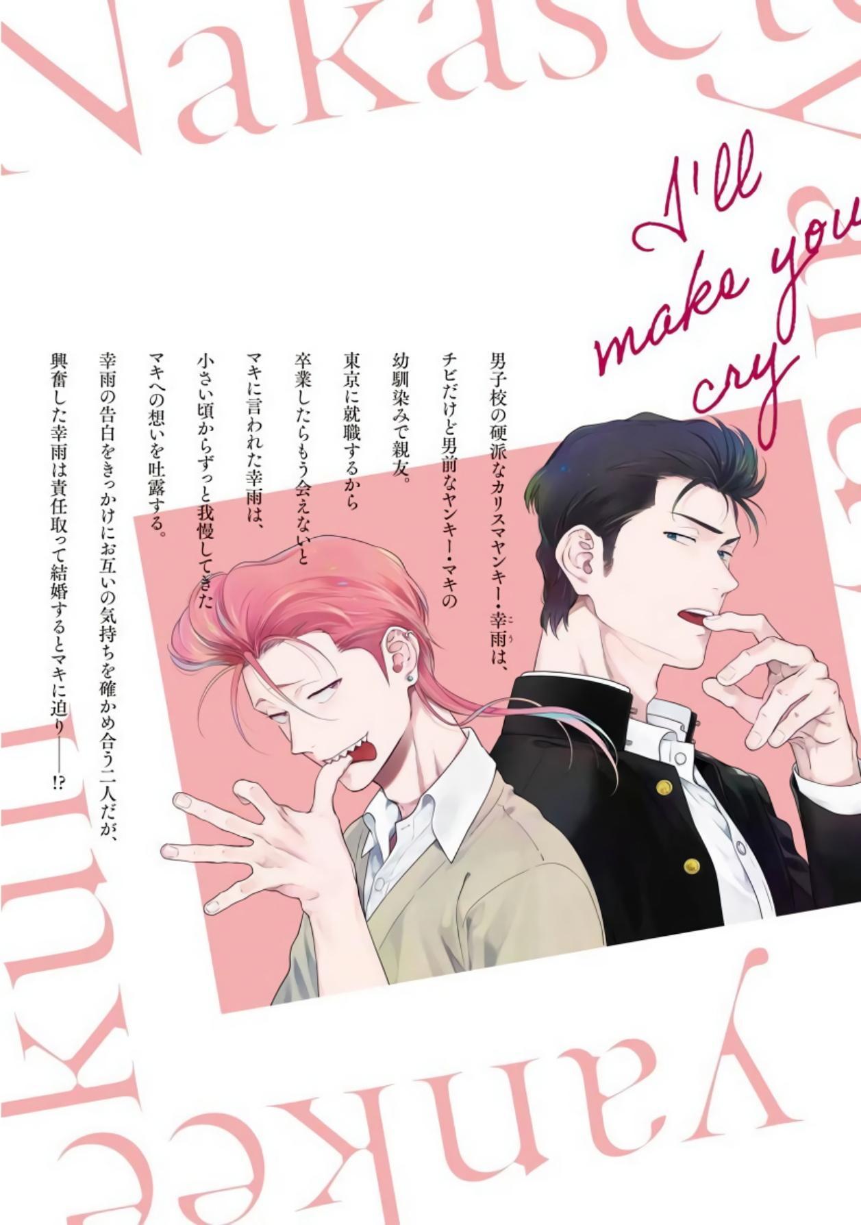 Nakasete Yaru yo Yankee-kun   让你哭噢小混混 番外 10