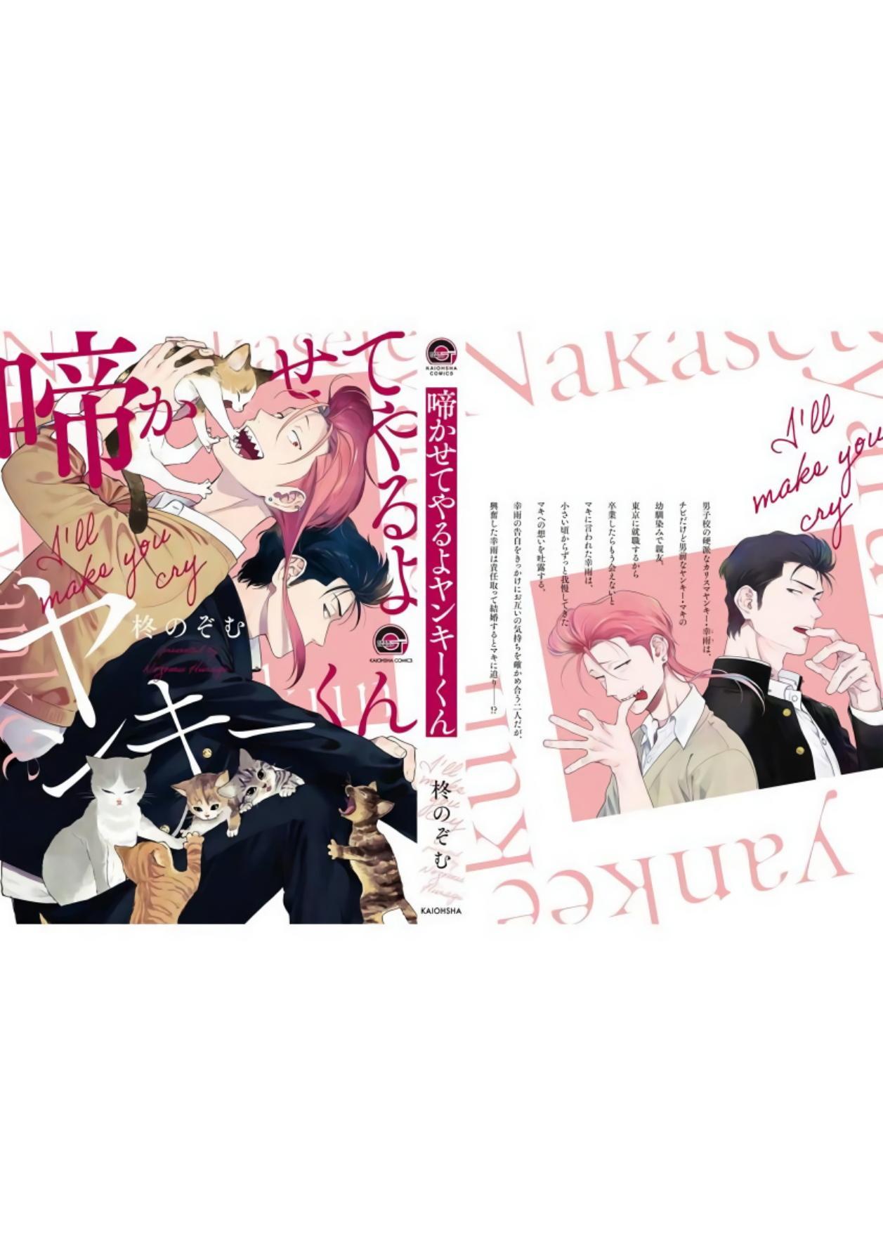 Nakasete Yaru yo Yankee-kun   让你哭噢小混混 番外 11