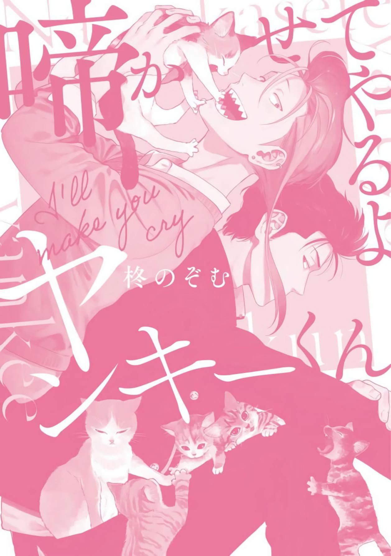 Nakasete Yaru yo Yankee-kun   让你哭噢小混混 番外 8