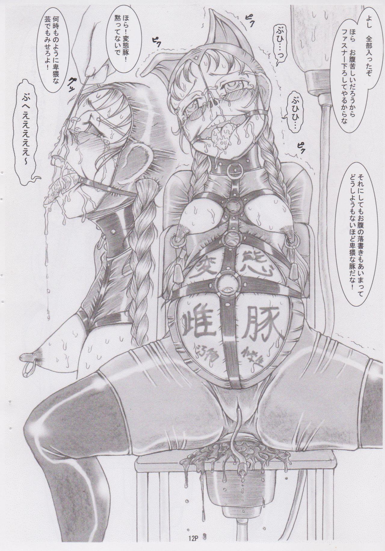 (C78) [Nekoneko Panchu! (Nekoneko Panchu)] Sanshimai Choukyou Yuugi [Yukari Hen] Yukari-chan no Butabana Kachiku Choukyou [Anal Higyaku Jugyou] 11