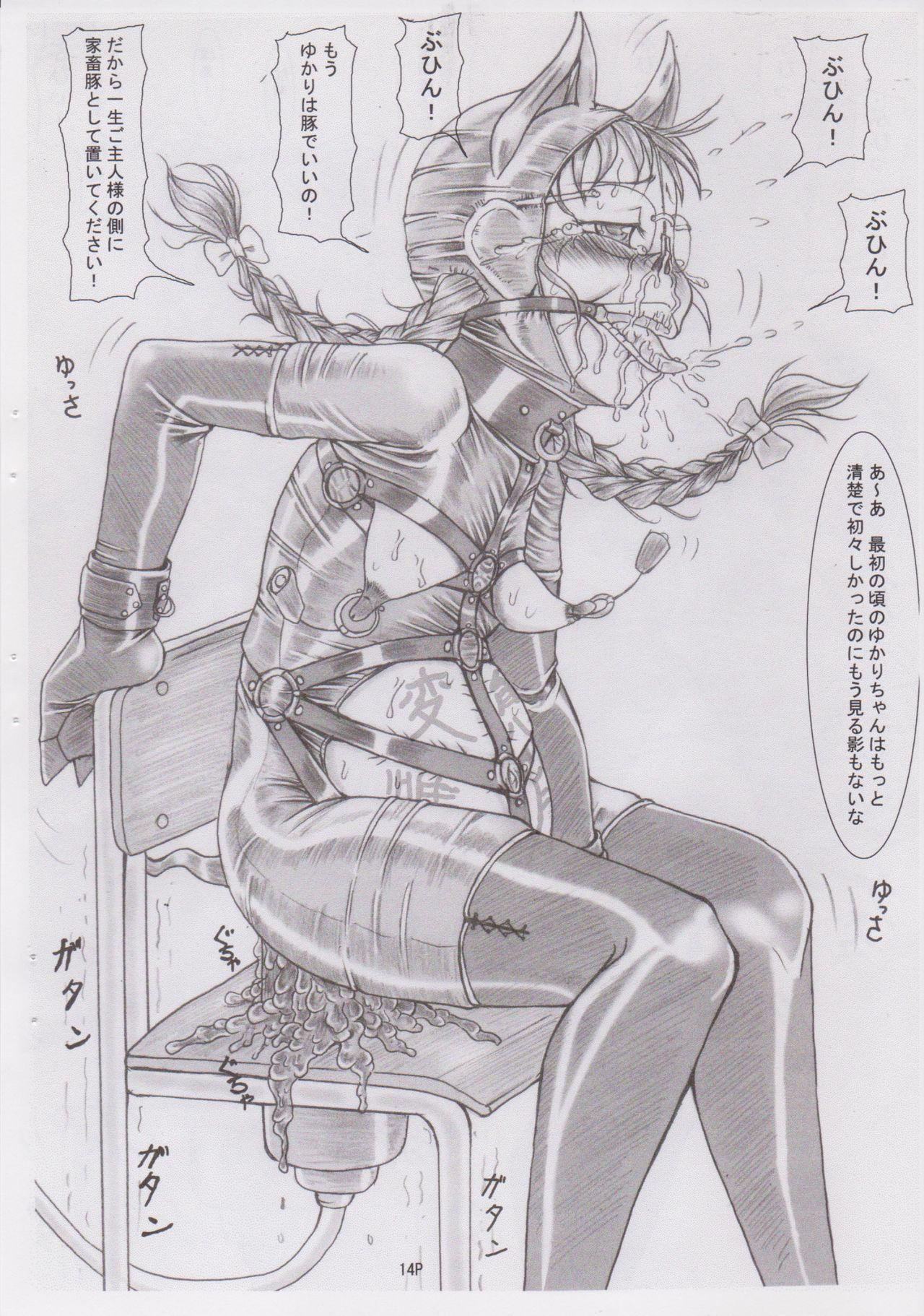 (C78) [Nekoneko Panchu! (Nekoneko Panchu)] Sanshimai Choukyou Yuugi [Yukari Hen] Yukari-chan no Butabana Kachiku Choukyou [Anal Higyaku Jugyou] 13