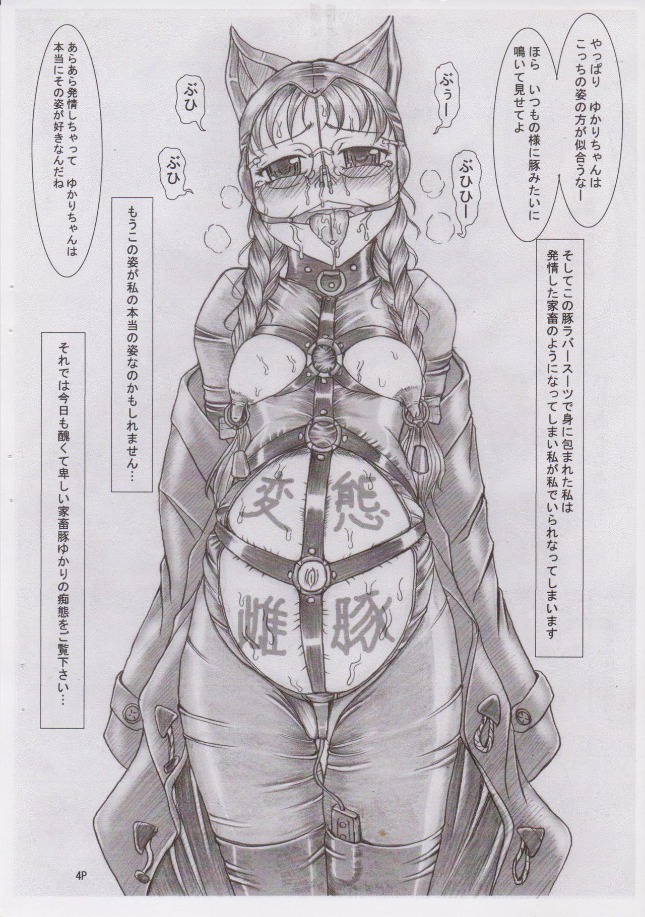(C78) [Nekoneko Panchu! (Nekoneko Panchu)] Sanshimai Choukyou Yuugi [Yukari Hen] Yukari-chan no Butabana Kachiku Choukyou [Anal Higyaku Jugyou] 3
