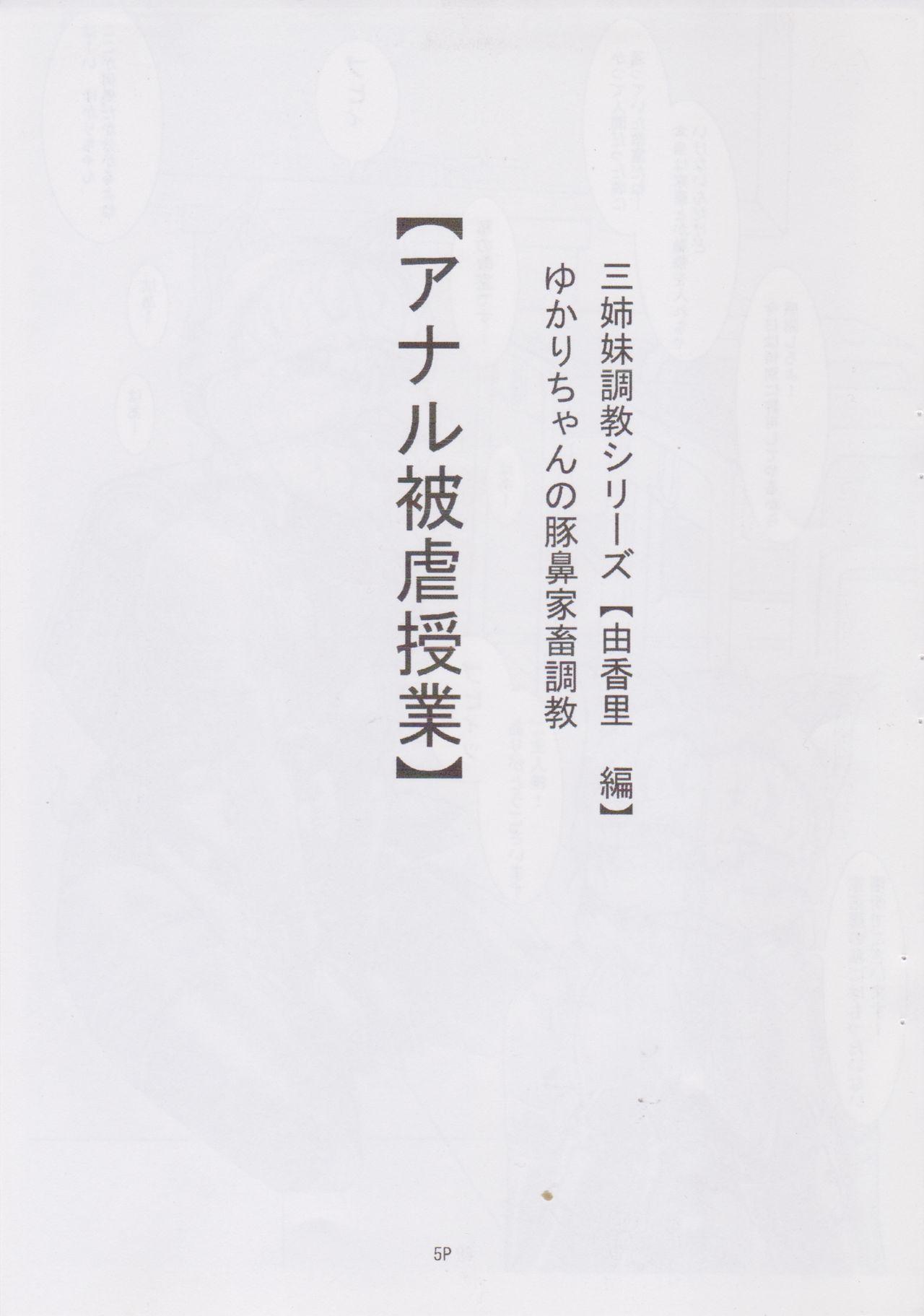 (C78) [Nekoneko Panchu! (Nekoneko Panchu)] Sanshimai Choukyou Yuugi [Yukari Hen] Yukari-chan no Butabana Kachiku Choukyou [Anal Higyaku Jugyou] 4