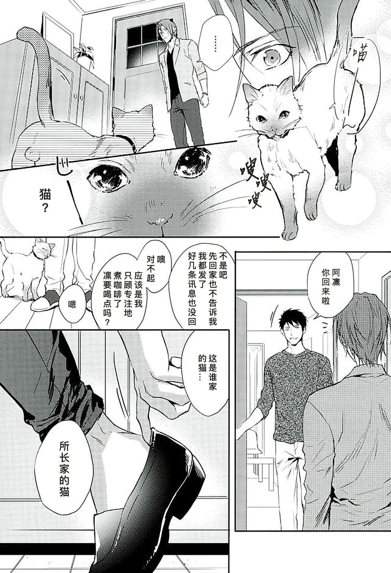 我家的喵主子 Wagaya no Nyanko-sama 6