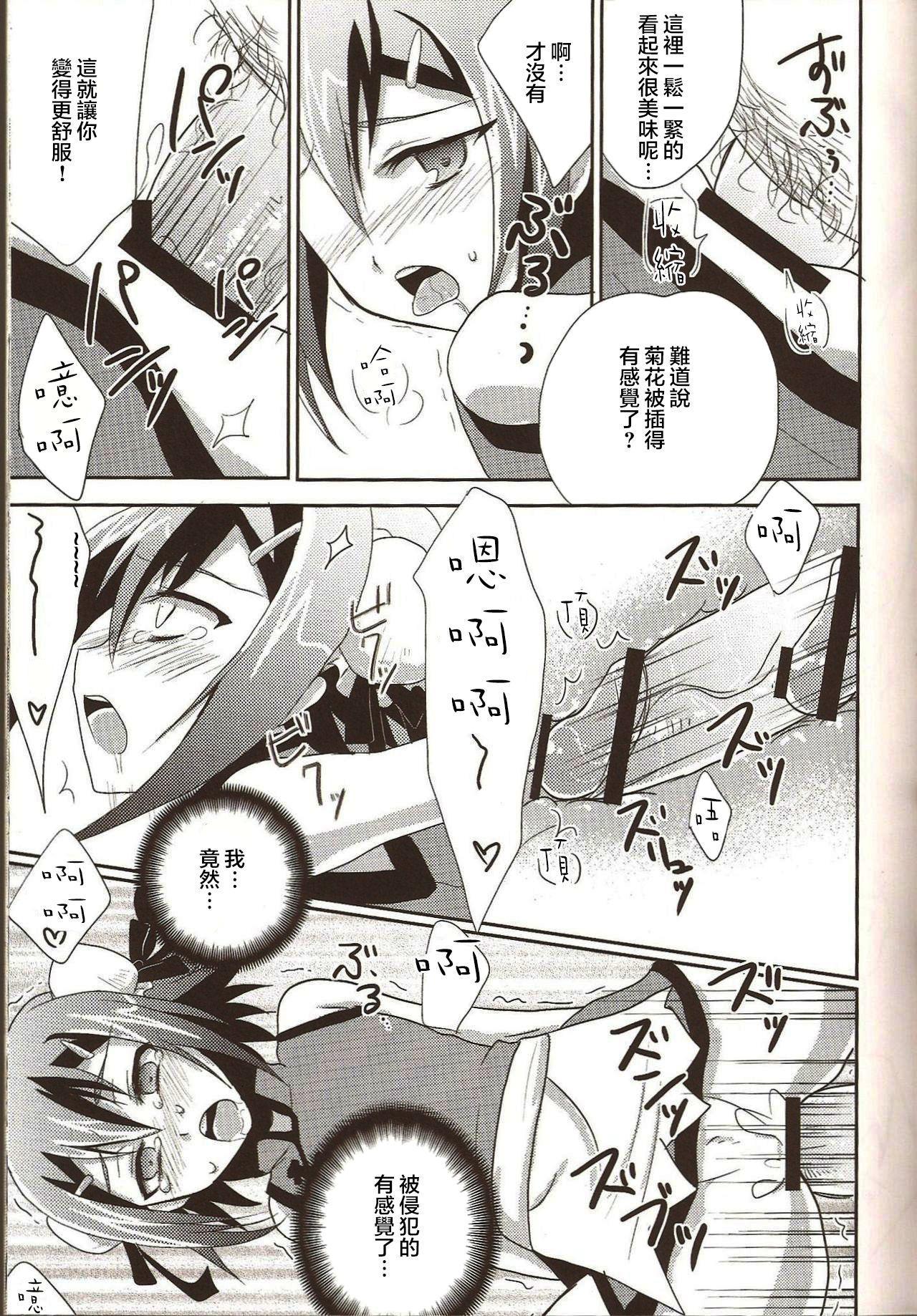 Hideyoshi Director's Cut 10