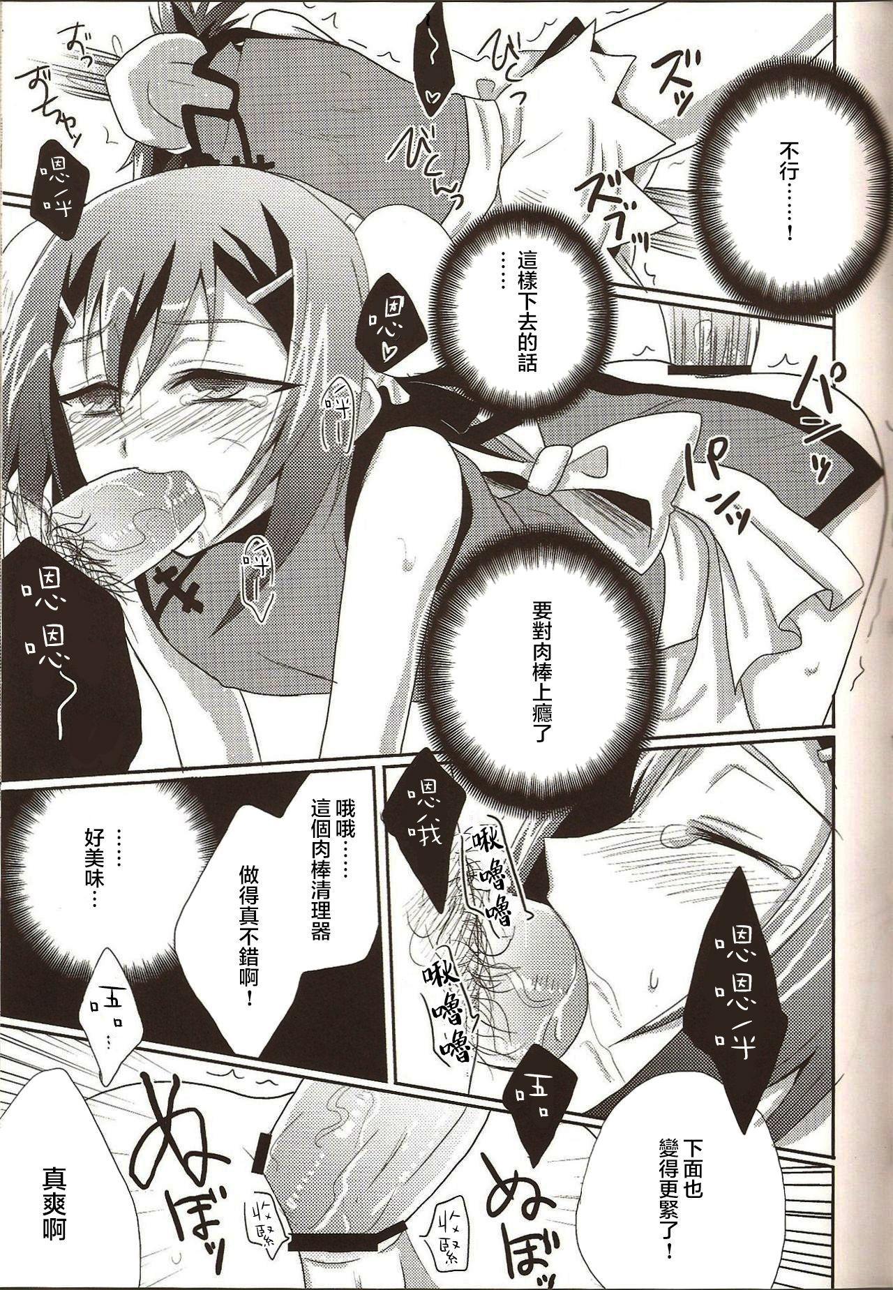 Hideyoshi Director's Cut 12