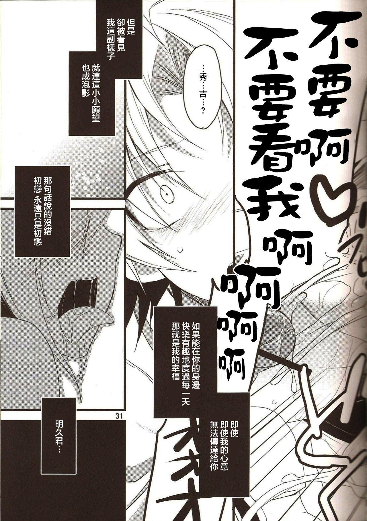 Hideyoshi Director's Cut 30