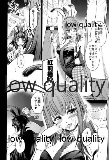 ERODEUS Tokubetsu Hanpu Version 8