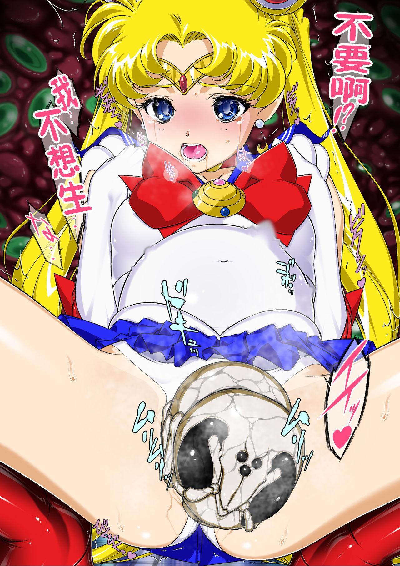 Sailor Moon Chu! 2 15