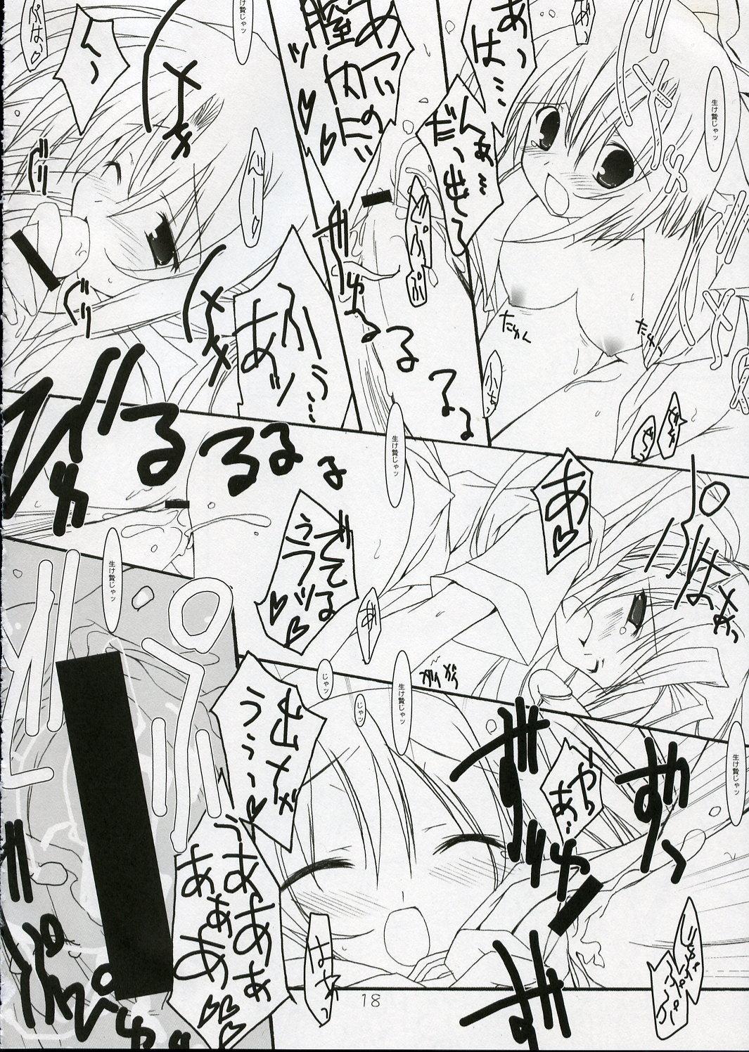 Hinamizawa Rankou Annai 16